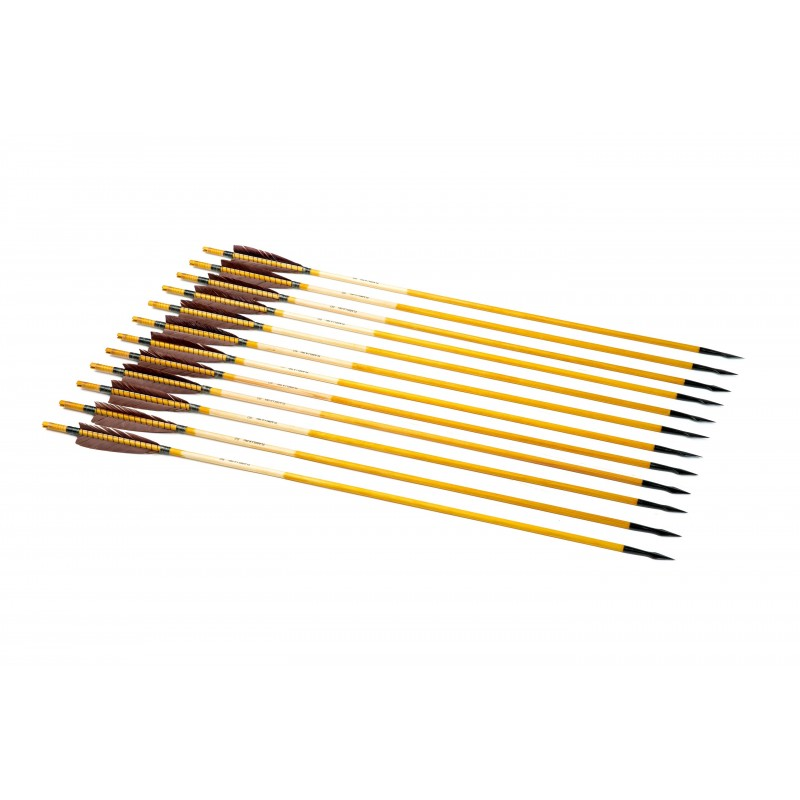 12x Nomad arrow set