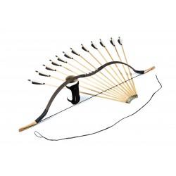 TAS Standard bow set