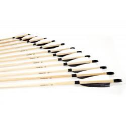 12x Classic arrow set